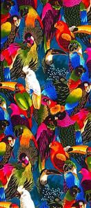 les 20 meilleures idees de la categorie oiseaux exotiques With nice toute les couleurs de peinture 6 peinture oiseau multicolore