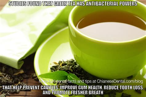 Green Tea Meme - green tea is good for your oral health scientists say