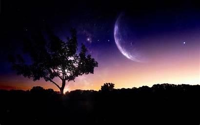 Sky Night Trees Nature Digital Manipulation Planet
