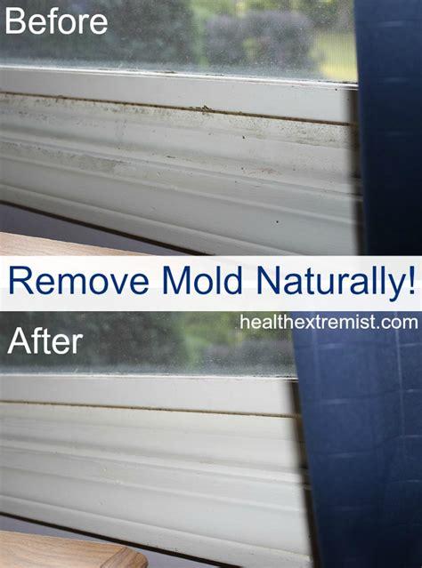 does baking soda kill mold in carpet floor matttroy