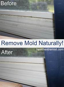 How to get rid of mold naturally 3 ways for How to get mould off bathroom walls