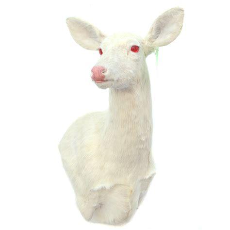 deer antler chandelier whitetail deer doe taxidermy mounts for sale and