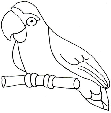 parrot clipart black and white parrot black and white clipart clipart suggest