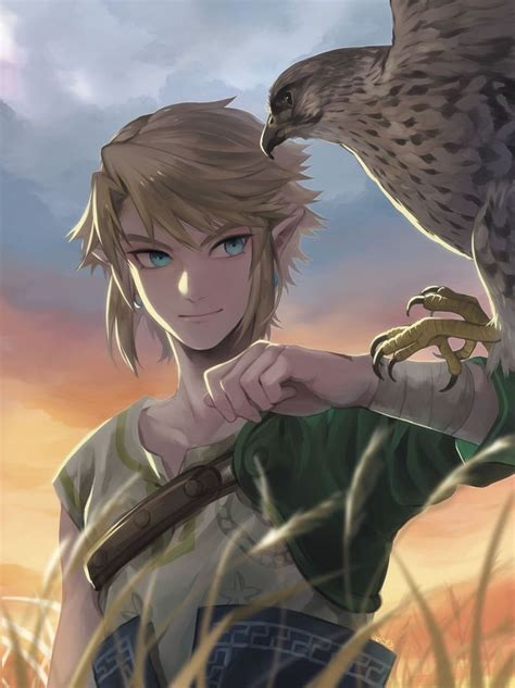 177 Best Images About The Legend Of Zelda On Pinterest