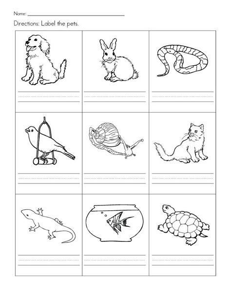 stempelkaart pets preschool theme animal worksheets