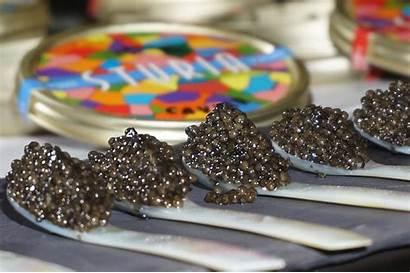 Caviar Dish Even Plan Had Ever Misused