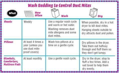 eliminate dust in bedroom how to get rid of dust mites in bedroom how to