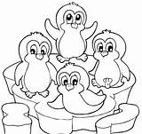 Coloring Penguin Pages Christmas Popular sketch template