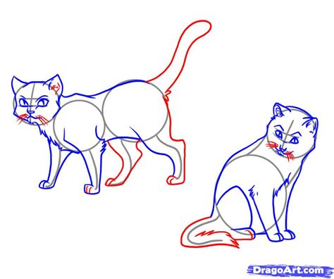 draw warrior cats step  step characters pop