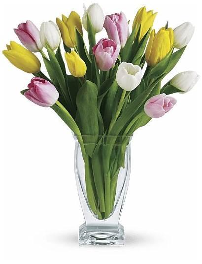 Tulip Meaning Tulips Flowers Symbolism Bouquet Teleflora