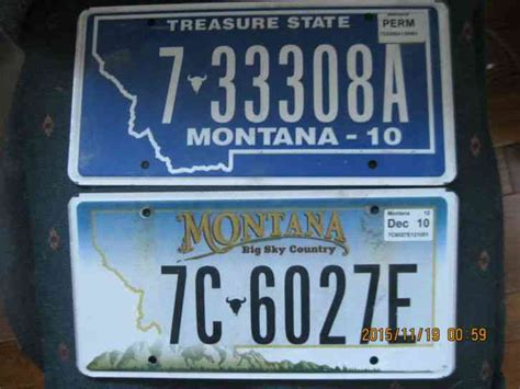 2 Types Of 2010 Montana Graphic Car License Plates