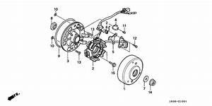 Generator For 1993 Honda Z50