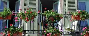 bildquelle c davidelliottphotos shutterstockcom With französischer balkon mit garten für die wohnung