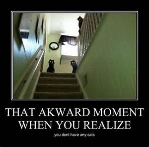 That Awkward Moment Funny Quotes. QuotesGram