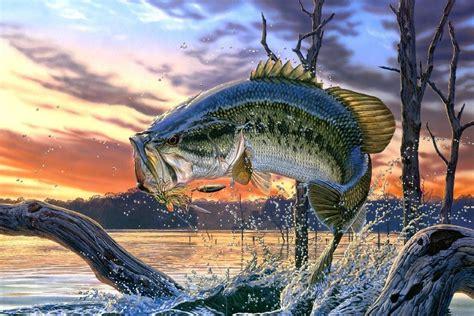 bass fishing lake sunset painting poster art silk fabric