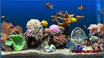Screensaver marine aquarium deluxe 3.2 - Download free