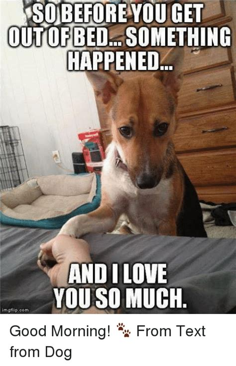 Much Dog Meme - before you get outofbedl something happened andi love you so much mgfiipcom good morning from