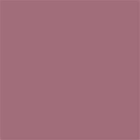 nuthatch paint color sw 6088 by sherwin williams view