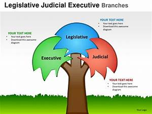 Branches Of Government Tree Diagram Pictures To Pin On
