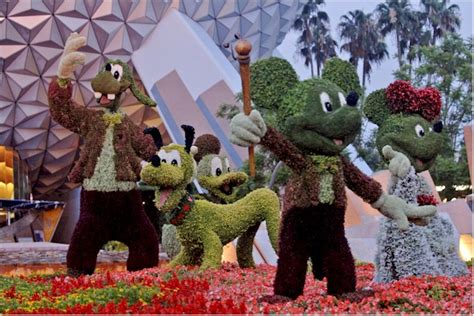 the 20th annual epcot international flower garden