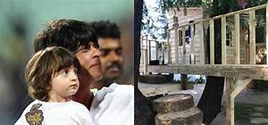 Shah Rukh Khans Son AbRam Gets His Own Treehouse