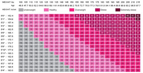 Bmi Weight Chart Women Free