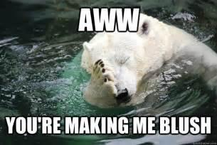 Awww Meme - aww you re making me blush embarrassed polar bear quickmeme