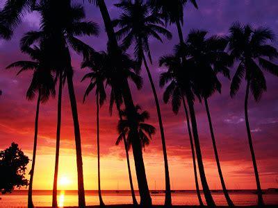sun set beautiful wallpapers hd deskop backgrounds sun