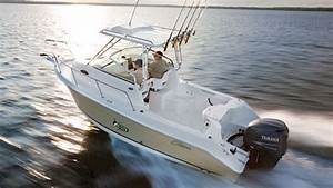 Seaswirl Striper 2101