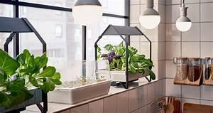 ikea indoor gardens produce food year round for homes With katzennetz balkon mit led indoor garden