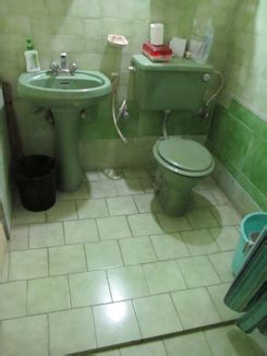 indian bathroom designs design altruism project 187 archive 187 the indian bathroom Simple