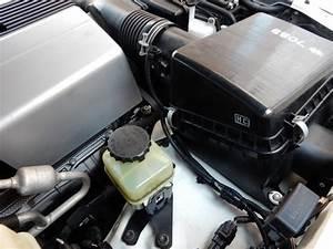 Tundra 4 7 Engine Diagram P1442  Catalog  Auto Parts Catalog And Diagram