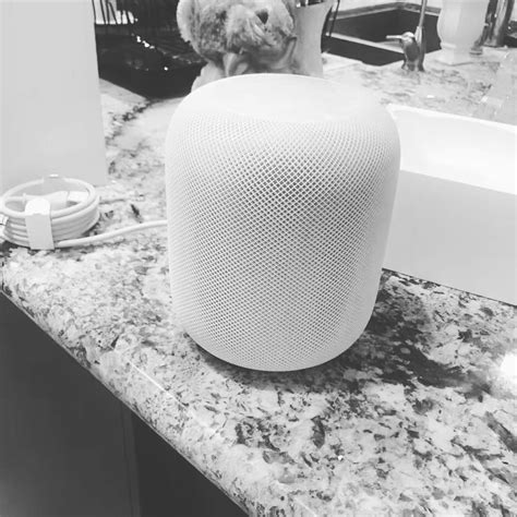 homepod hardware spotted in china and california