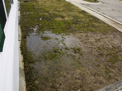 yard drainage problems good drainage could transform this disaster zone yard ideas blog yardshare com