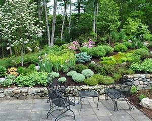 Hillside landscaping fayetteville nc health board for Landscaping ideas for hillside