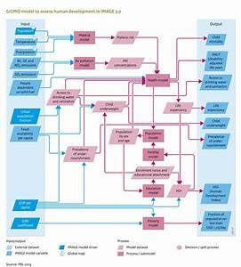 Flowchart Human Development