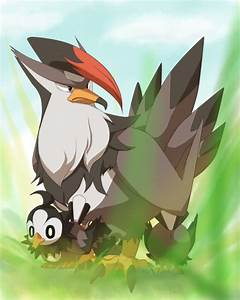 Pokemon Starly Evolve Images | Pokemon Images