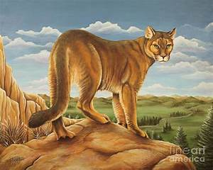 Mountain Lion Painting by Tish Wynne