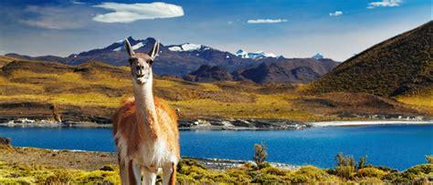 Patagonia Discovery Trek (Argentina to Chile) | Aurora ...