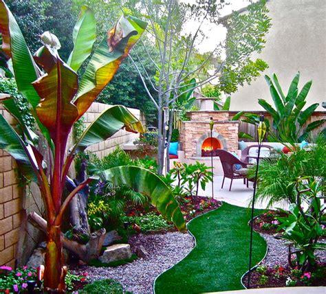 backyard tropical ideas small spaces big ideas