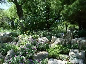 Stauden Für Den Schattigen Garten : 6 arten von schattenpflanzen f r einen wundersch nen garten ~ Markanthonyermac.com Haus und Dekorationen