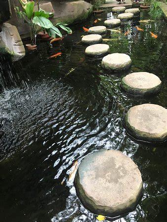 Botanischer Garten Berlin Veranstaltungen 2017 by Botanischer Garten Und Botanisches Museum Berlin Dahlem