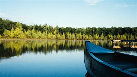 lake nature landscape forest boat morning preview