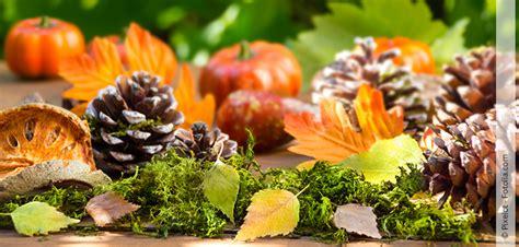 Aus Naturmaterialien by Herbstdeko Aus Naturmaterialien Hallo Frau
