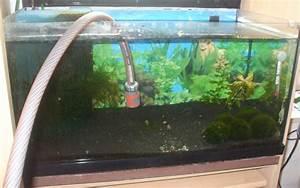 Aquarium Ohne Wasserwechsel : jbl aqua in out 61430 wasserwechselset f r aquarien zum anschluss an den wasserhahn ~ Eleganceandgraceweddings.com Haus und Dekorationen