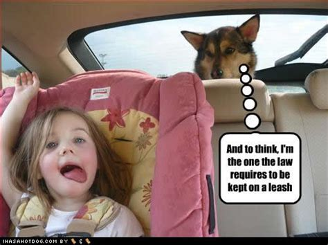 Images Of Funny Baby Pictures With Captions For Kids Golfclub