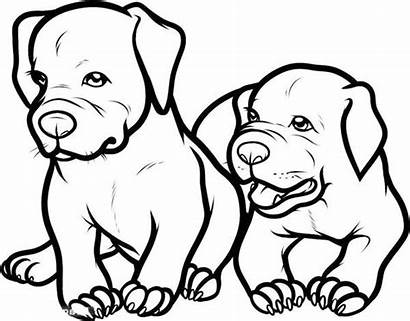 Pitbull Coloring Pages Dog Puppy Adorable Drawing