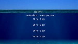 Applications And Examples Of Hydrostatic Pressure