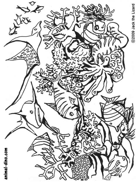 sea coloring pages coloring home