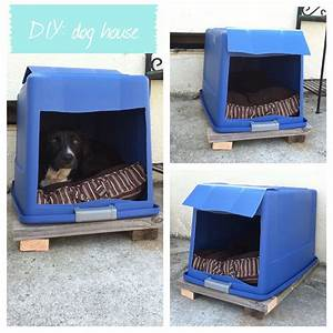 Diy dog house plastic bin with lid attached cut a hole for Easy diy dog house